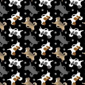 Trotting long coat Chihuahuas and paw prints C - black