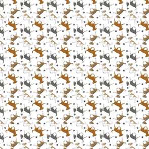 Trotting smooth coat Chihuahuas and paw prints B - tiny white