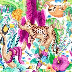 Rainforest Animals_by Stella