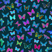Painted Rainforest Butterflies
