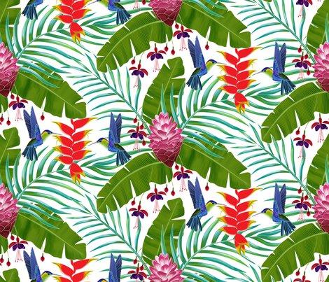 Rhummingbird_in_the_rainforest_shop_preview