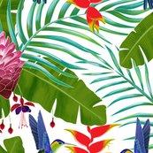 Rhummingbird_in_the_rainforest_shop_thumb
