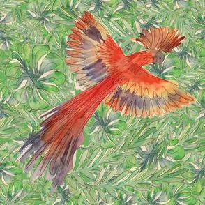 Rainforest_bird