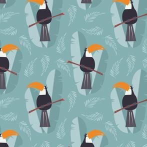 Proud toucan 002
