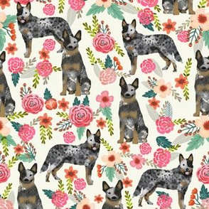 Australian Cattle Dog florals cream
