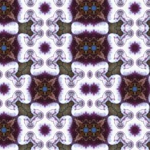 Plum kaleidoscope