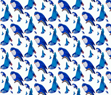 Blue Lories fabric by parrots on Spoonflower - custom fabric