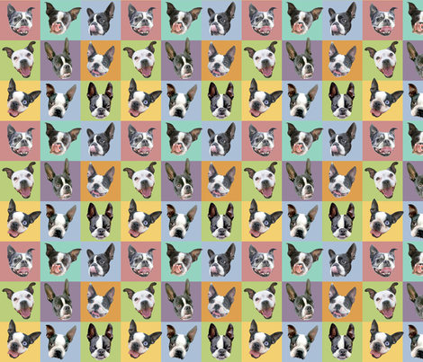 Boston Terriers - small portraits fabric by rawbonestudio on Spoonflower - custom fabric
