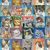 Pbn_cat2_med_shop_thumb