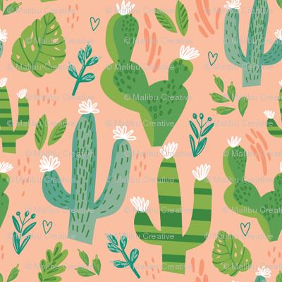 Cacti Mix 4 - Peach