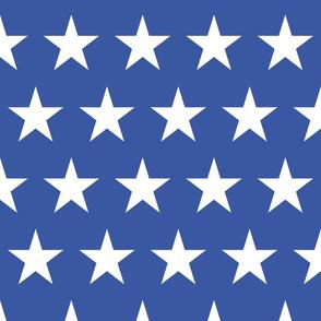 Classic Flag - Big Star