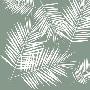 palm leaf palm leaves palm tree - jade smokey green