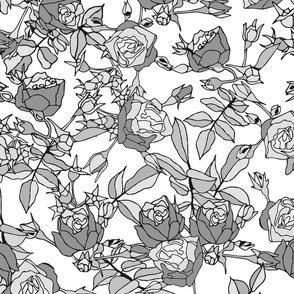 Garden Roses - Greyscale