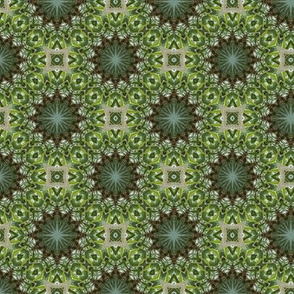 Green kaleidoscope stars