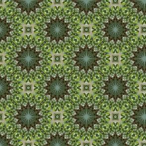 Green kaleidoscope stars