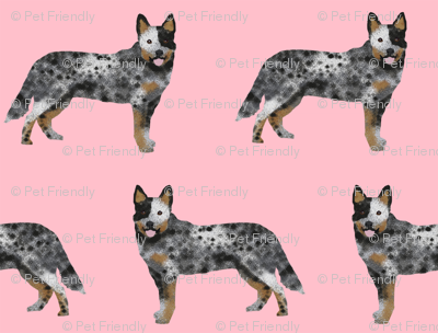 australian cattle dog simple pink