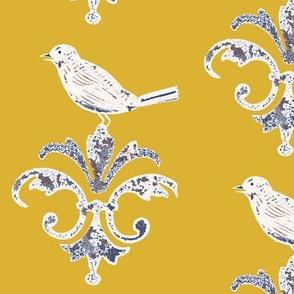 Mustard_Garden_Bird