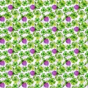Irish Clover Flower