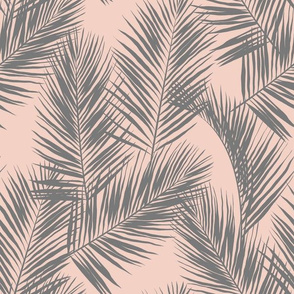 palm leaves - gray on blush, small. silhuettes tropical forest grey gray blush light pink hot summer palm plant tree leaves fabric wallpaper giftwrap