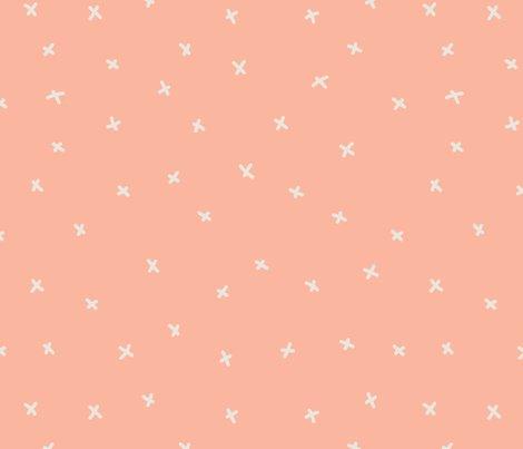 020bb_cats_peach_x-01_shop_preview