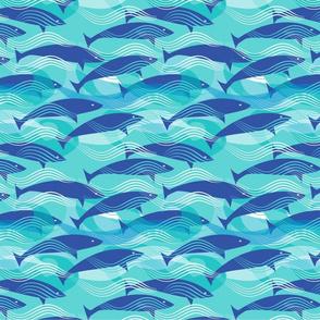 DancingDolphins