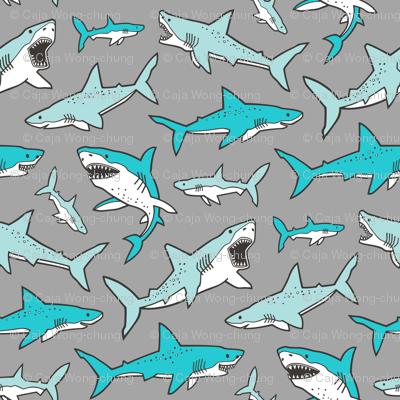 Sharks Shark Aqua Blue on Grey