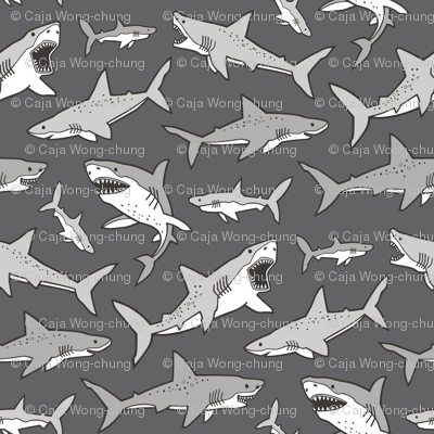 Sharks Shark Grey on Dark Grey