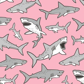Sharks Shark Grey on Pink
