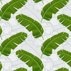 Banana Leaves: Bg White