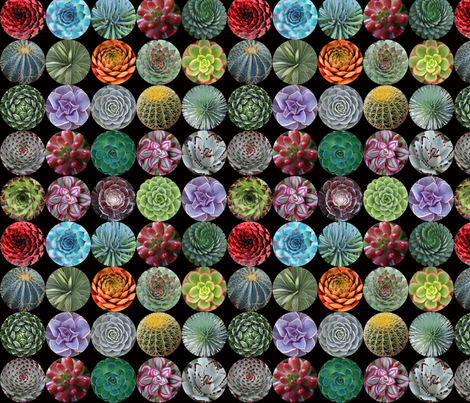 Succulent Circles - small black fabric by rawbonestudio on Spoonflower - custom fabric