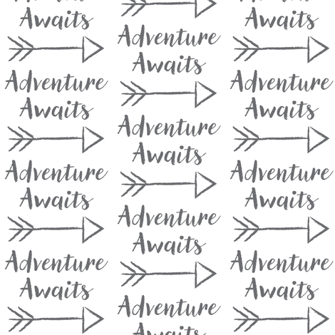 adventure-awaits fabric by lilcubby on Spoonflower - custom fabric
