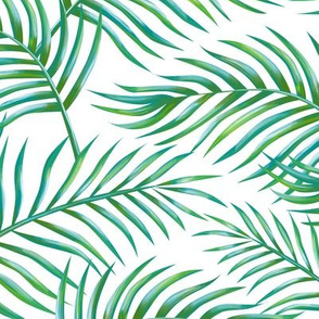 Palm_leaves_Bg_White