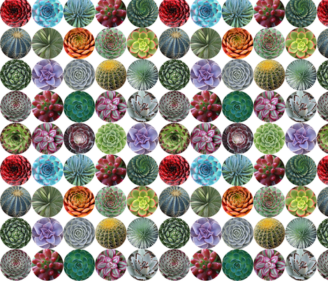 Succulent Circles - small white fabric by rawbonestudio on Spoonflower - custom fabric