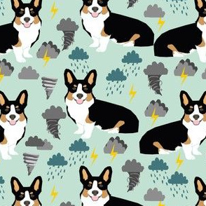 corgi storm fabric tornado weathers lightning dog fabric