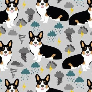 corgi storm chaser fabric tri colored corgi tornados fabric