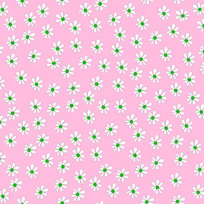 Pretty Pink Daisies