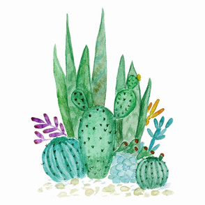 Green cacti and succulents.