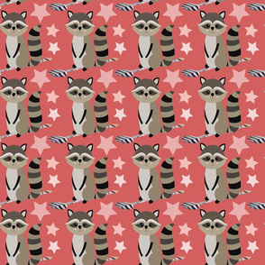 Star racoon on coral