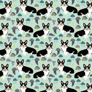 corgi weather storm fabric tricolored corgi design
