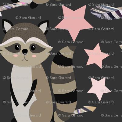 Star racoon on dark grey