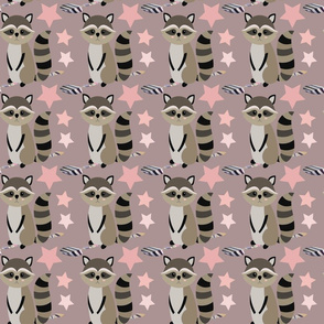star raccoon on puce