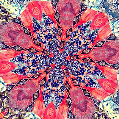 Blue China Poppy