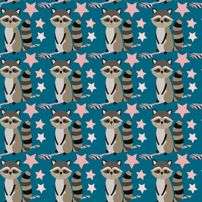 Star Racoon on indigo