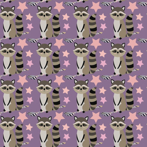 Star Racoon on Plum