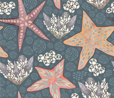 Starfish, Mussels and Barnacles, oh my! fabric by call_me_ashmael on Spoonflower - custom fabric