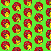 Pineapple in red, yellow & green