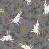 White Rabbit on grey