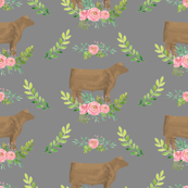 Showstock & Roses - Buff / Cream Steers