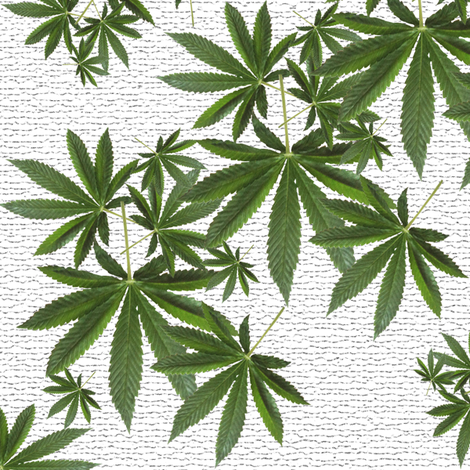 Stony Indica Leaf fabric by camomoto on Spoonflower - custom fabric