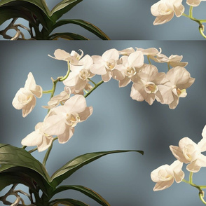 Orchid Placemats